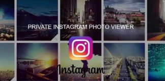 Top Best Instagram Profile Viewer Sites and Applications - View in Full Size