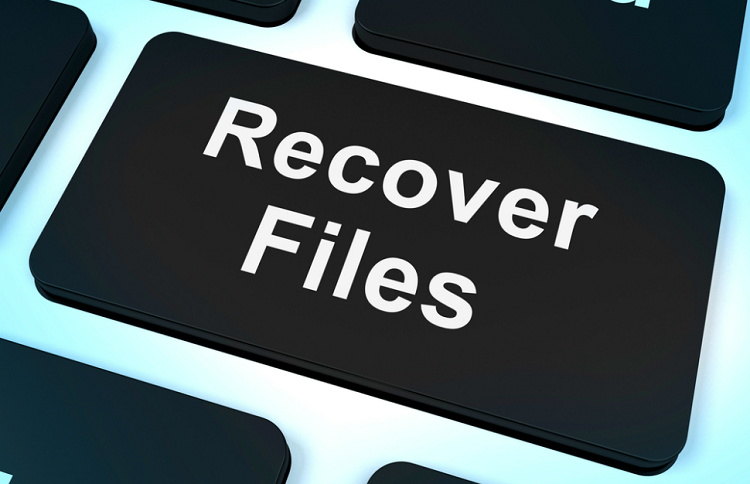 How to Recover Deleted Photos from A RAW SD Card