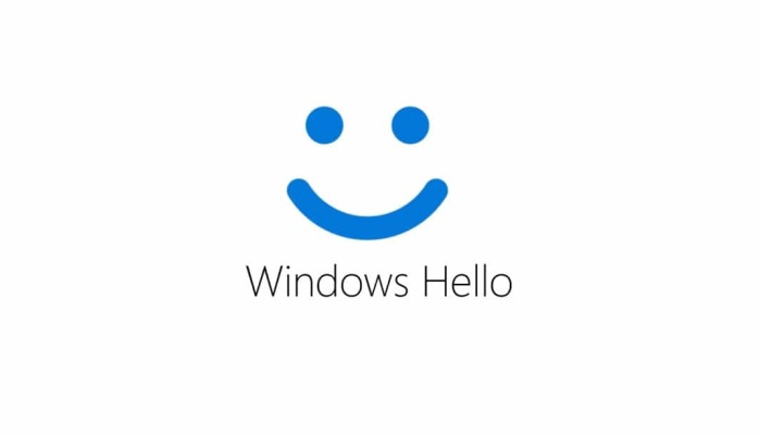 Activate Windows Hello