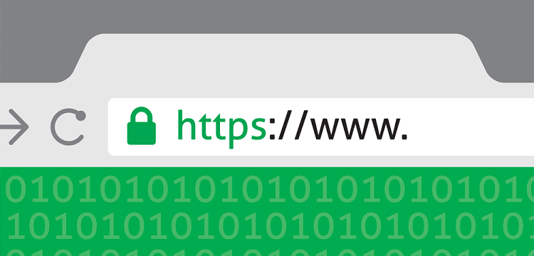 Steps to Secure Your Website