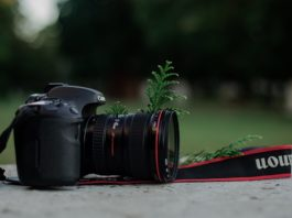 What You Need To Know About A Digital Single Lens Reflex Camera Before You Buy One
