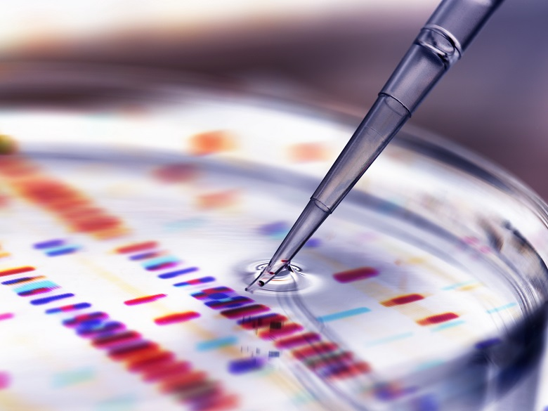 Researching Your Genealogy Using DNA Testing